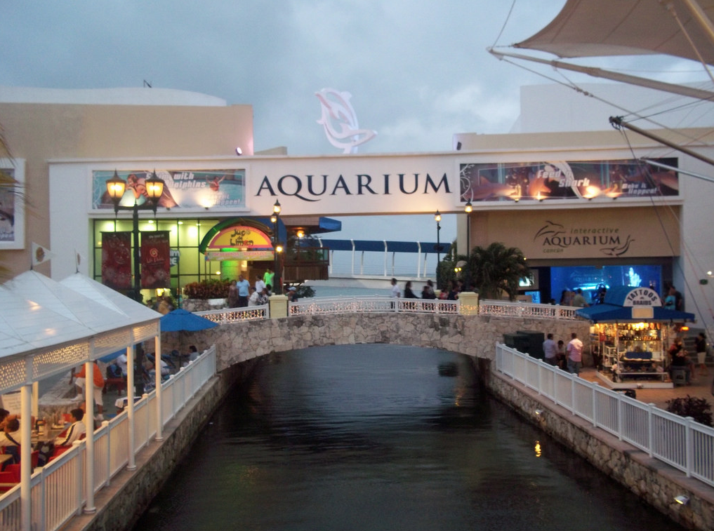 Tour Cancun's Interactive Aquarium
