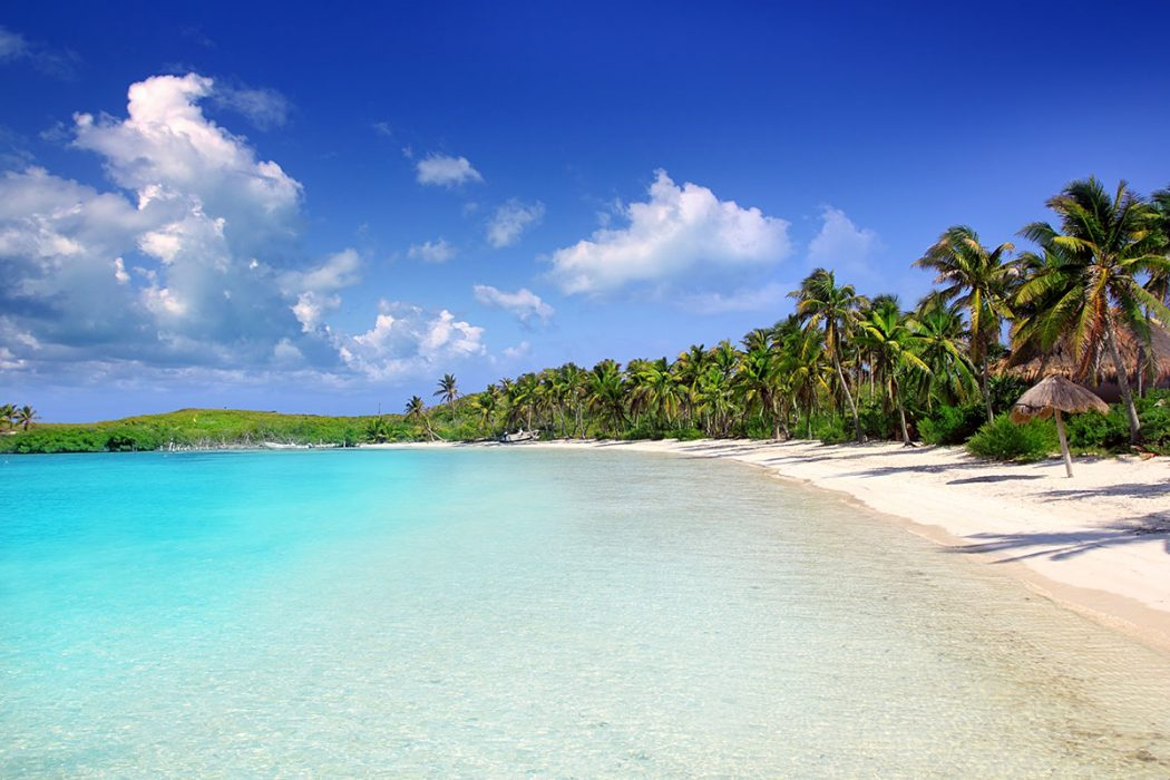 Cancun's Isla Contoy
