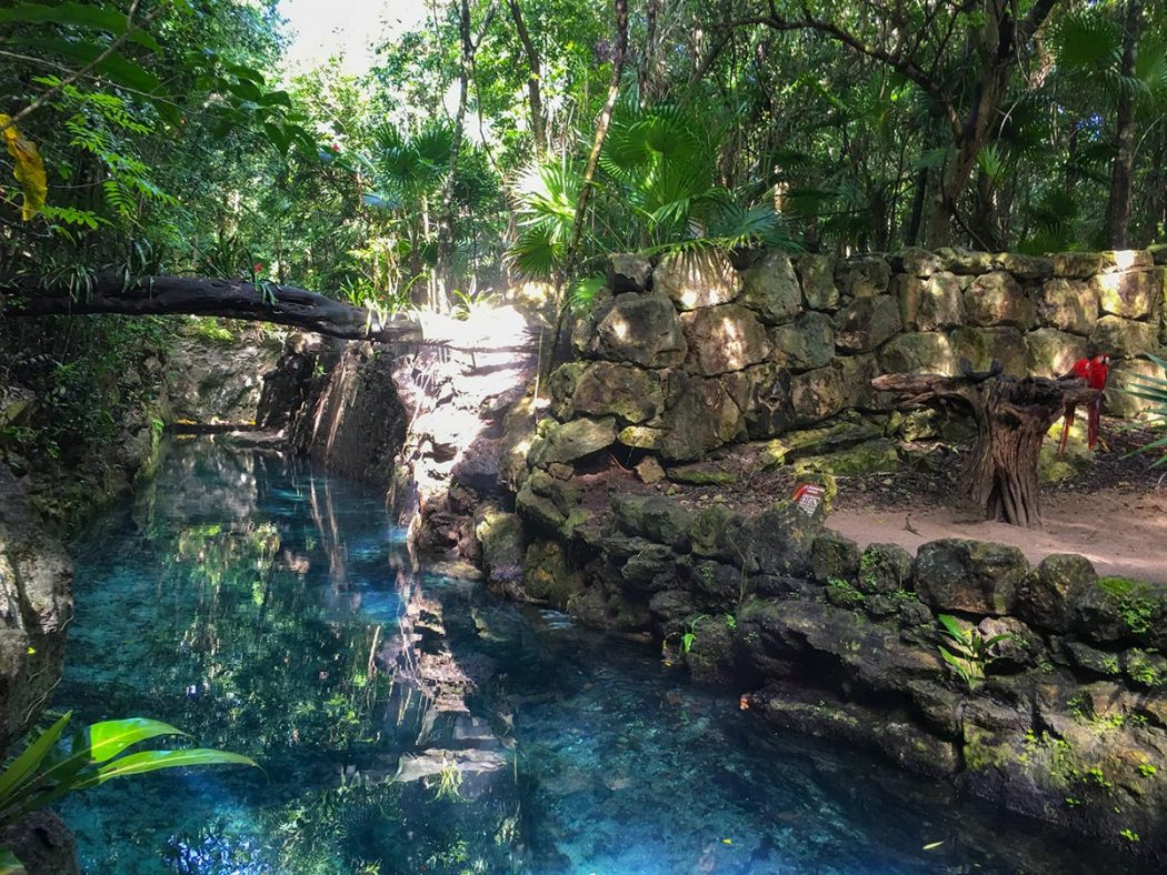 Xcaret Review & Itineraries for the Eco Theme Park near ...  |Xcaret Adventure Park