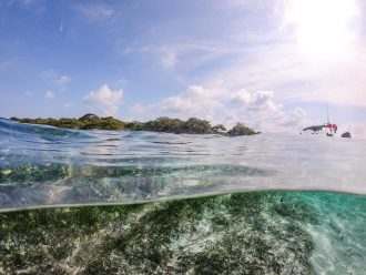 Top 6 Cancun Activities